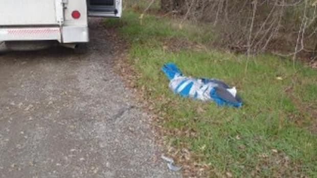 Man Finds Strange Object On The Side Of The Road, Makes Gruesome Discovery Promo Image
