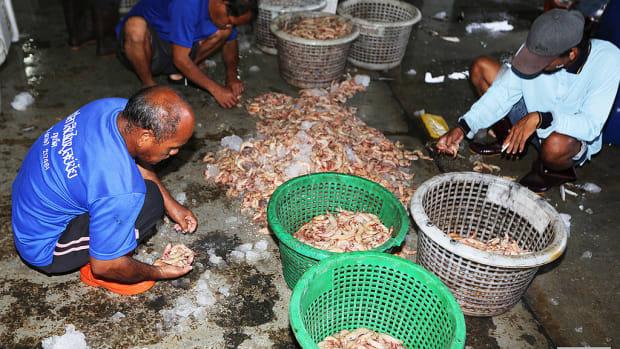 Thai Fish Market