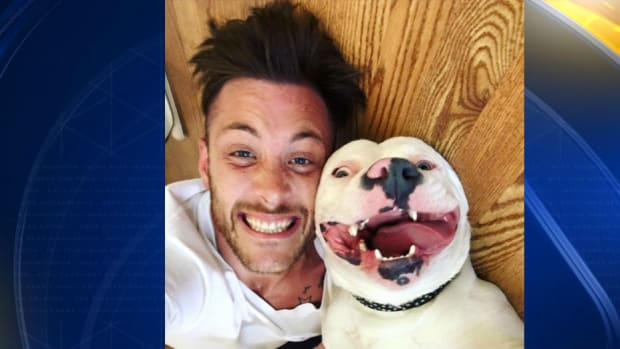 Adopted Dog That Went Viral Now Might Be Taken Away Promo Image