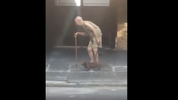Dog Walks Slowly So Elderly Owner Can Keep Up (Video) Promo Image