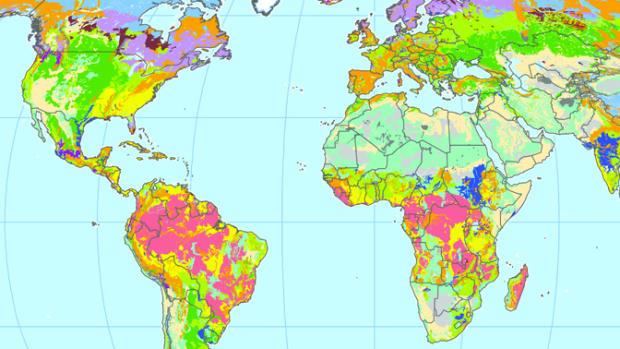 USGlobalMap.jpg