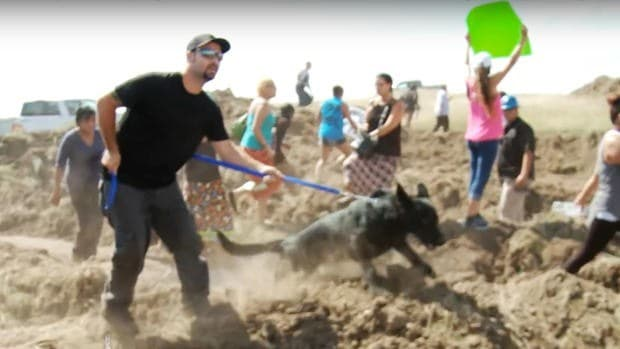 Pipeline Guards May Face Charges For Using Dogs (Video) Promo Image