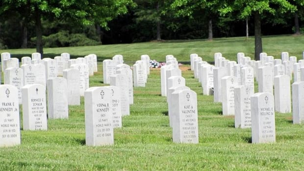 Man Cleans Veterans' Headstones (Video) Promo Image