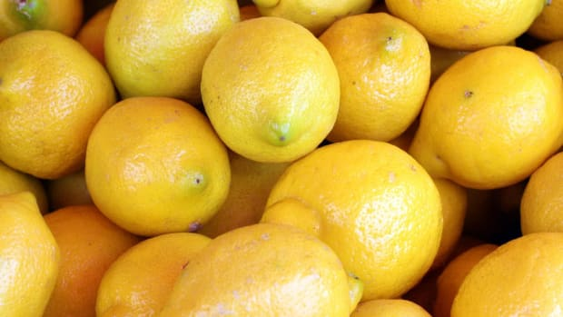 These Photos Of Lemons Could Save Your Life (Photos) Promo Image