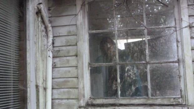 Haunted House Portraying Orlando Shooting Canceled (Photo) Promo Image