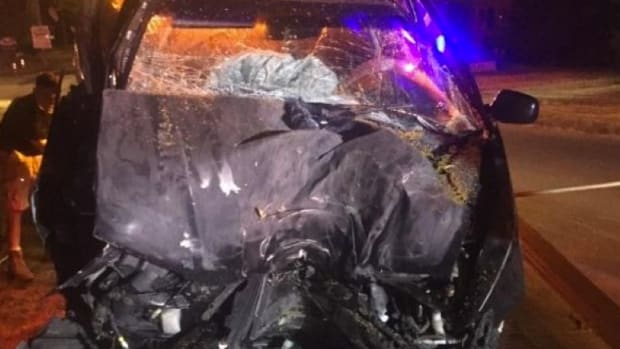 Ex-Marine Playing 'Pokemon Go' Crashes Car Into Tree Promo Image