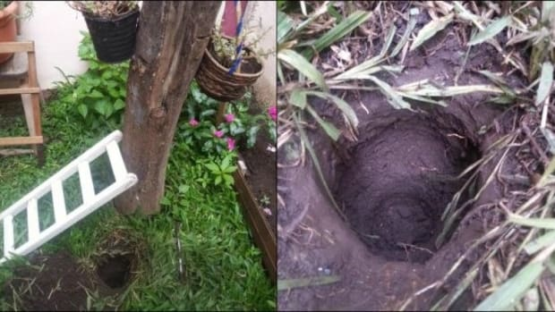 Man Finds Mysterious Glass Jar While Digging (Photos) Promo Image