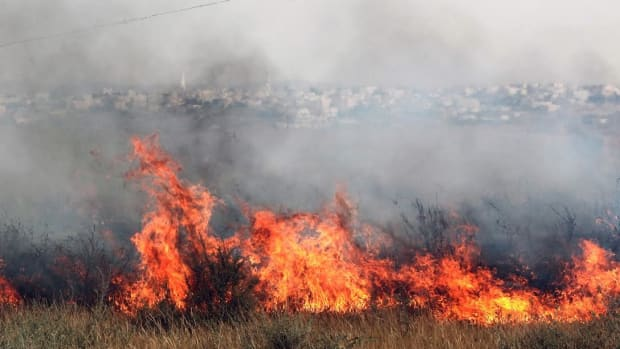 Police: Wave Of Arson Hits Israel Promo Image