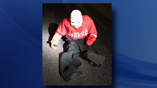 Carjackers Pose Dummy As Child Sitting In Road  Promo Image