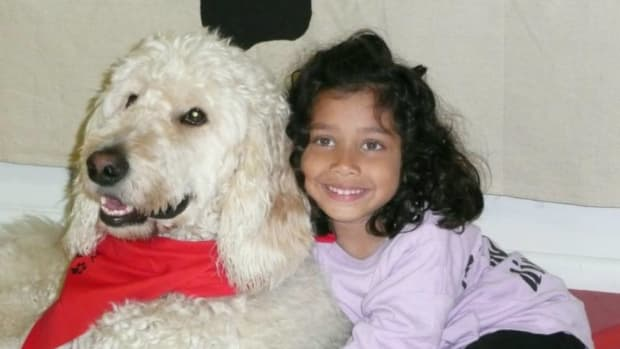 Supreme Court To Decide If Girl Can Take Dog To School Promo Image