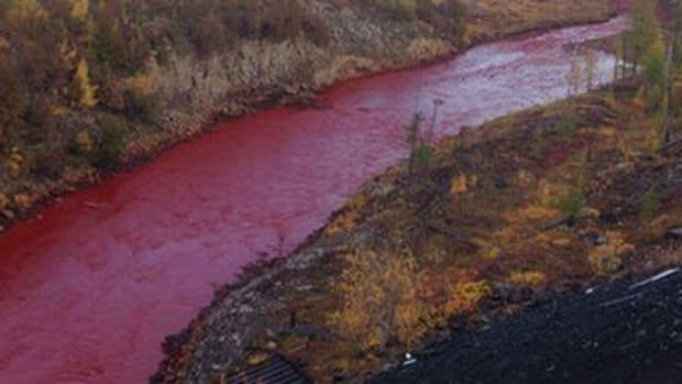 Russian River Turns Blood Red (Photos) Promo Image