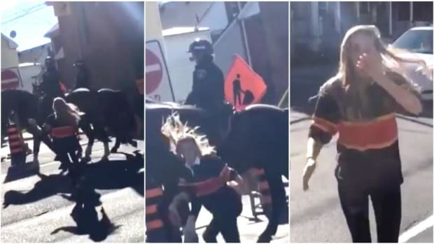 Young Woman Slaps Police Horse, Gets Smacked Back (Video) Promo Image
