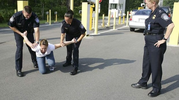 Police: Woman Assaults Officer During Traffic Stop (Video) Promo Image
