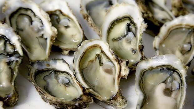 Woman Eats Raw Oysters, Dies From Flesh-Eating Bacteria Promo Image