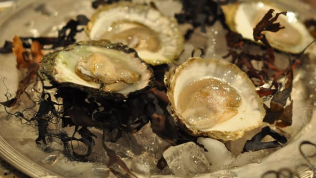 Woman Battling Cancer Dies After Eating Oysters Promo Image