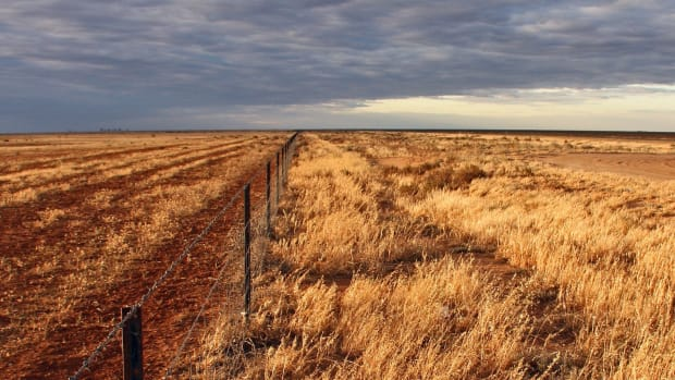 Drought Worsens In Several States, Agriculture Affected (Photos) Promo Image