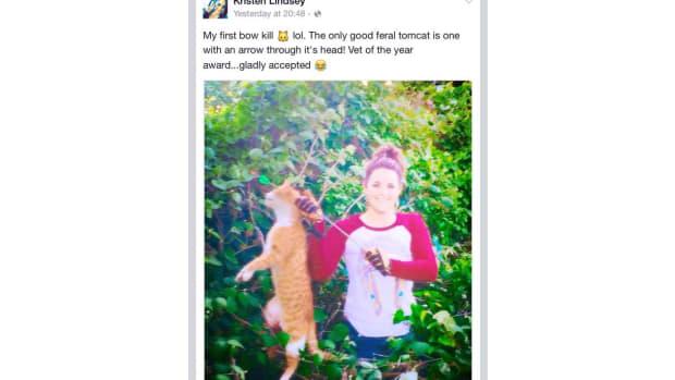 cat_featured.jpg
