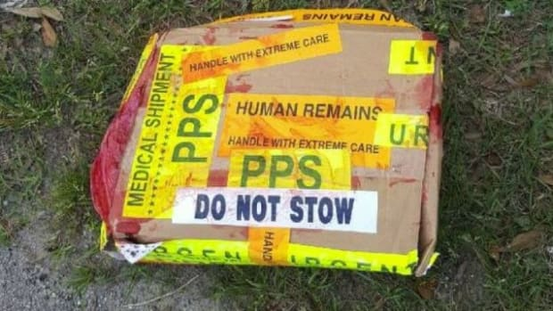 'Human Remains' Box Believed To Be A Hoax Promo Image