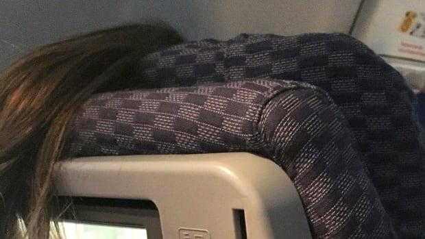 Plane Passenger's Rude Act Goes Viral (Photos) Promo Image