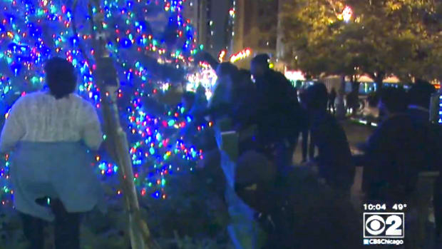 Protesters Chicago Christmas Tree