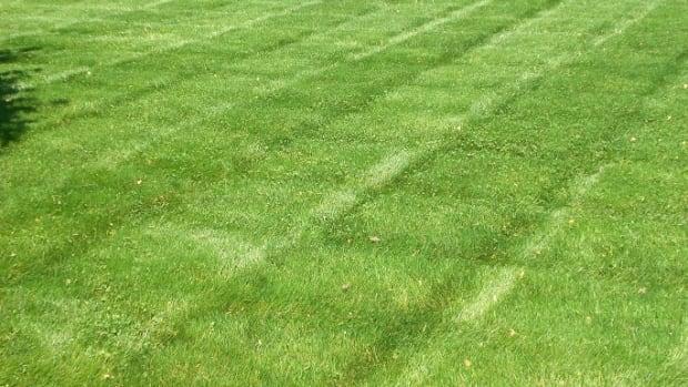 Deputy mowing woman's lawn
