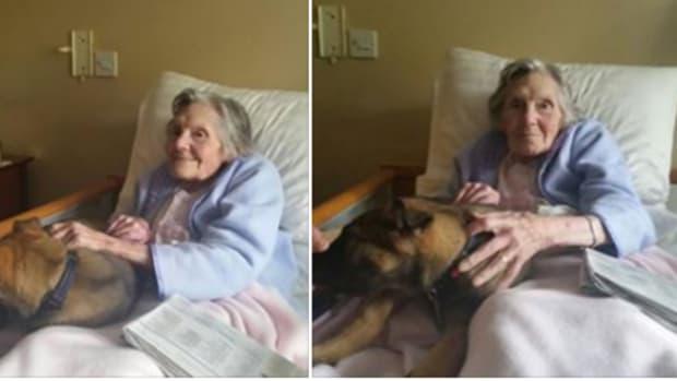 elderly patient meets police puppy