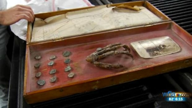 Monkey Hand And Coins.