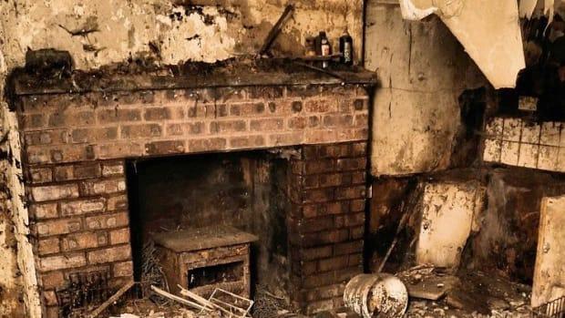 Animal Shelter Abandoned In Shocking Condition (Photos) Promo Image
