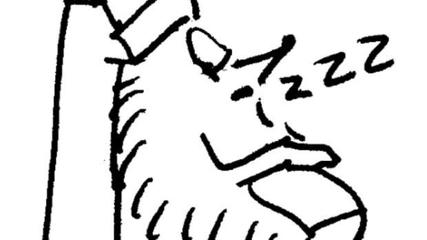 SleepingCartoon.jpg