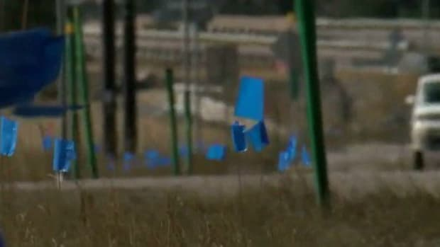 Here's Why You'll See Blue Flags In Colorado (Photos) Promo Image