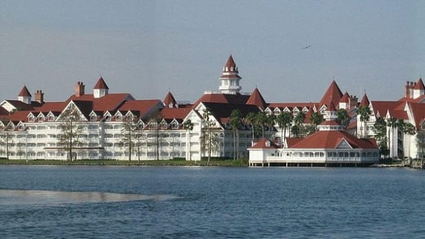Alligator Attacks 2-Year-Old Boy At Disney Resort Promo Image