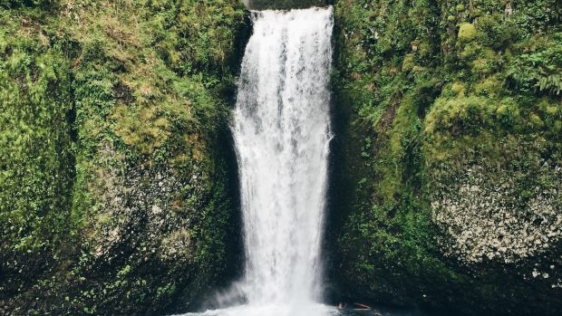 Selfie At Waterfall Reveals Something Terrifying (Photo) Promo Image