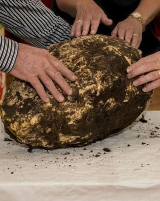 2,000-Year-Old Edible Bog Butter Discovered In Ireland Promo Image