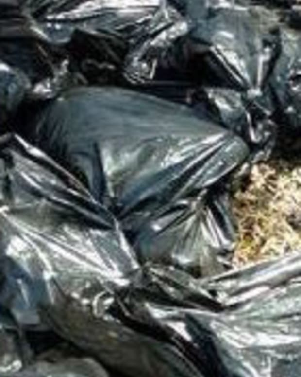 Remains Of 22 Dogs Found In Garbage Bags In Ditch Promo Image