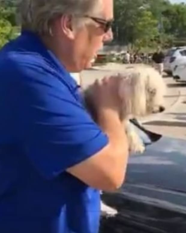 Man Saves Dog Trapped Inside Hot Car (Video) Promo Image
