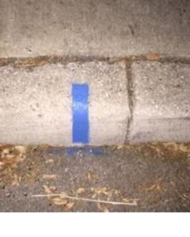 Here's Why People Are Spray-Painting Blue Strips On Street Curbs Promo Image