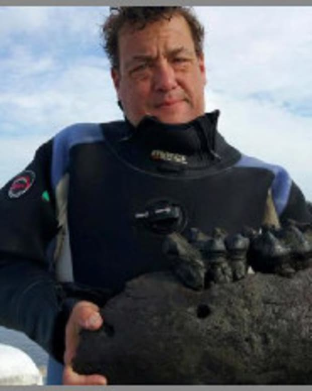 Diver Finds Mastodon Jaw In Georgia River Promo Image