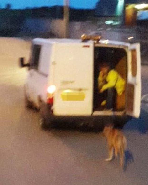 British Men Drag Dog Behind Van While Driving Promo Image