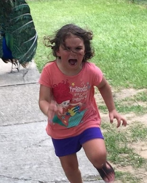Users Photoshop Girl Running From Peacock (Photos) Promo Image