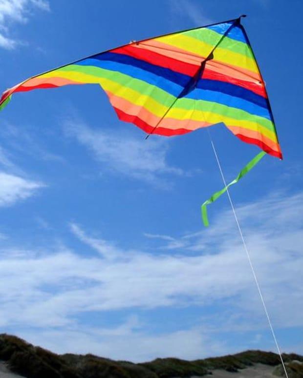 Glass-Coated Kite String Kills Three Promo Image