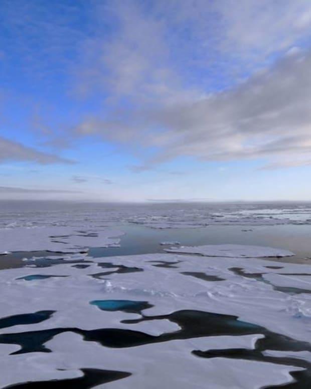 Climate Scientist: Trump Administration Deleting Data Promo Image