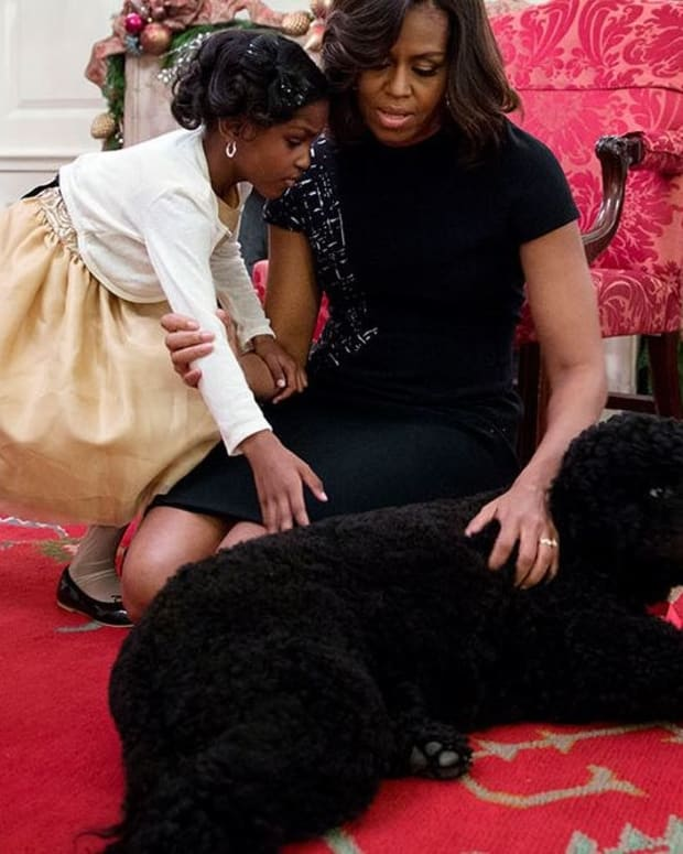 Obama's Dog Allegedly Attacks White House Guest (Photo) Promo Image