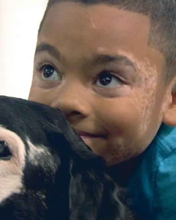 Boy Meets With Dog Who Suffers From Same Skin Disorder (Photos) Promo Image