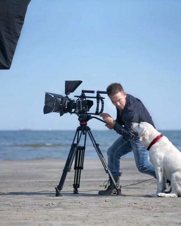 Heartwarming Film Shows A World With Talking Dogs (Video) Promo Image
