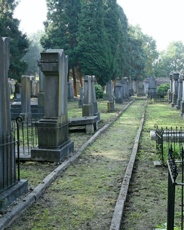 Saint Louis Jewish Cemetery Vandalized Promo Image