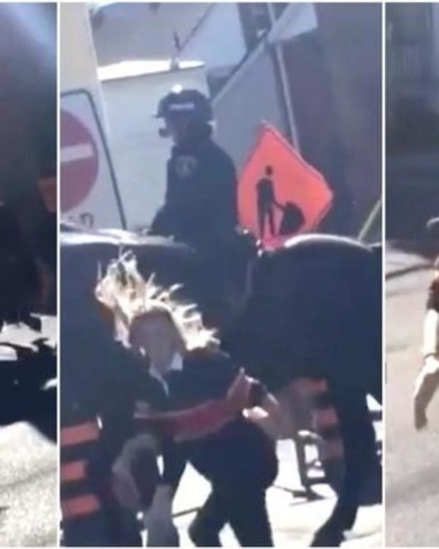 Young Woman Slaps Police Horse, Doesn't Anticipate Horse's Response (Video) Promo Image