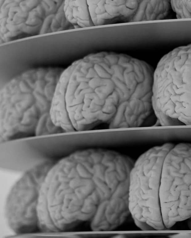 Elizabeth Thomas' Father Thinks She Was Brainwashed (Video) Promo Image