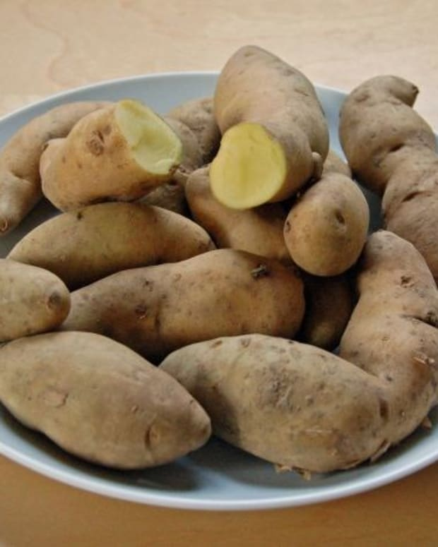 Family's Fate Highlights Danger Of Rotten Potatoes Promo Image