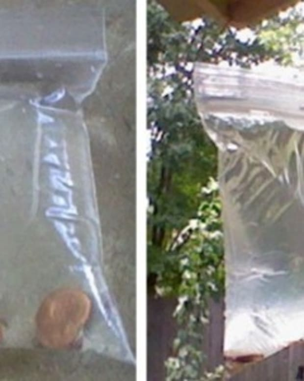 If You Start To See Ziploc Bags Filled With Pennies, Here's Why They're Up There (Photos) Promo Image