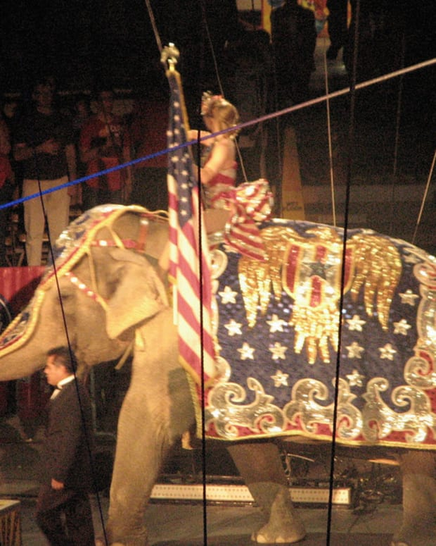 Ringling Bros. Circus Prepares For Final Performance Promo Image